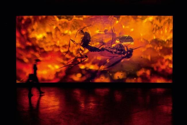 Bienal Arte - De-Extinction, de Pierre Huyghe 32º edição