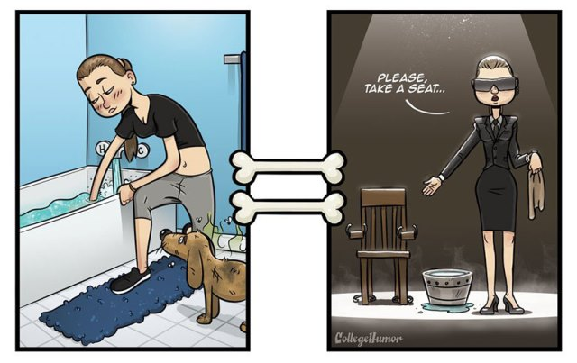 how-dogs-see-world-illustrations-robert-brown-2-5721f83edb530__880