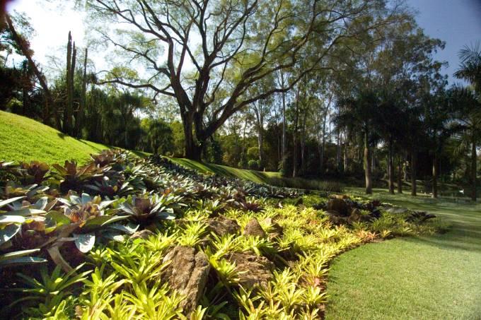 jardins_inhotim_foto_marco_mendes