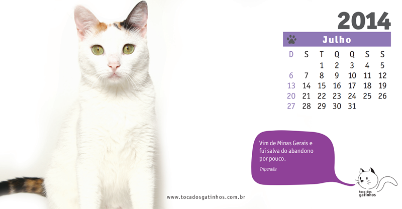 Calendário da Toca dos Gatinhos