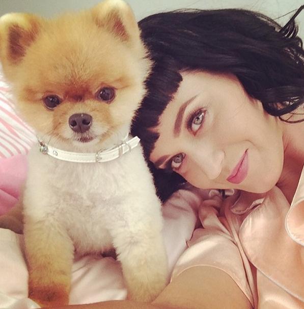 A popstar Katy Perry e sua franjinha (Foto: Reprodução/Instagram)