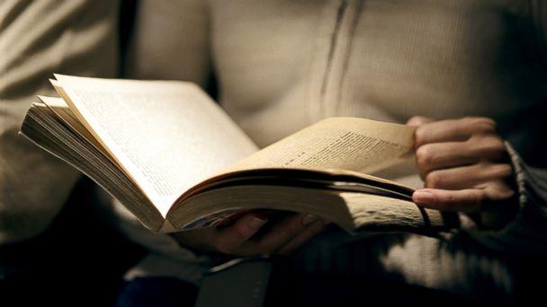 ler-escuro