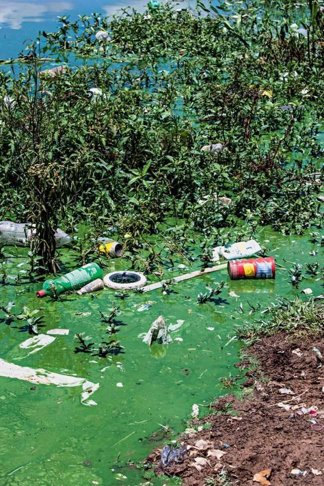 Represa Billings lixo