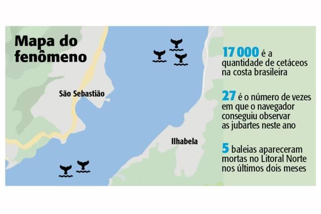mapa - baleia