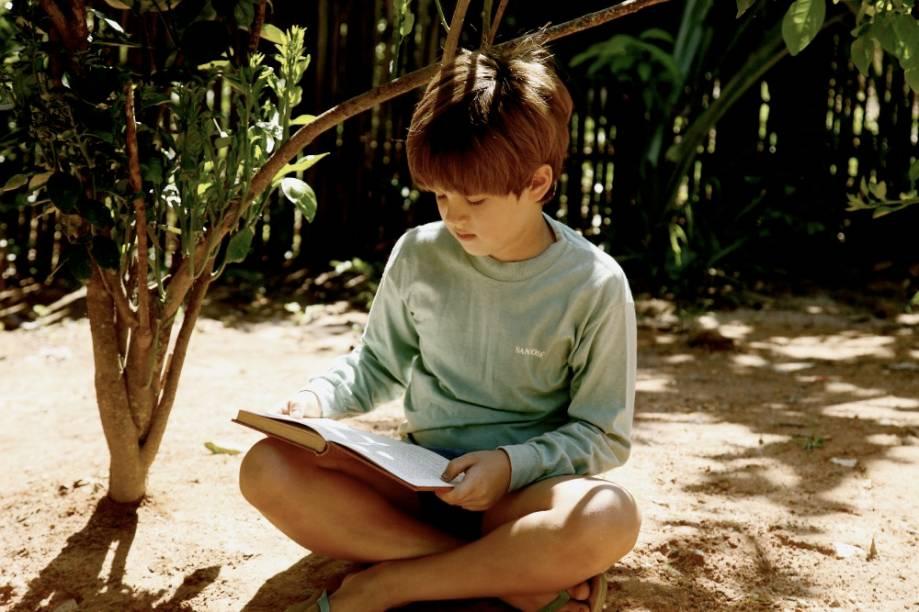 Meu Pé de Laranja Lima: história de um garoto esperto, inteligente e arteiro