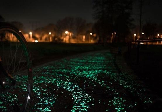 A ciclovia iluminada (Foto: Reprodução)