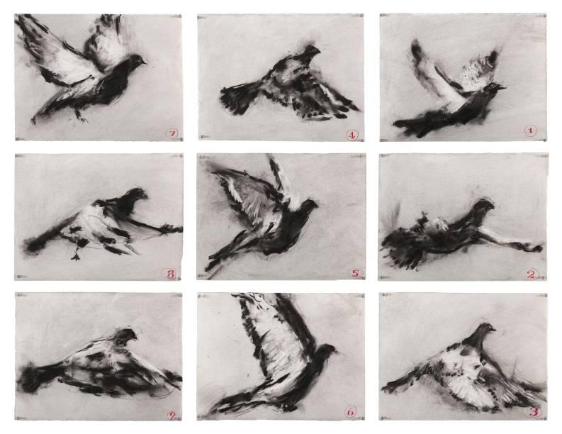 Sem título (nove pássaros em voo), 2011, Charcoal on paper, William Kentridge