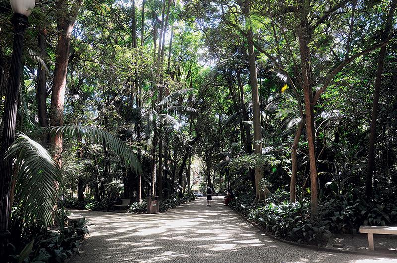 Parque Trianon: ideal para relaxar na região da Paulista