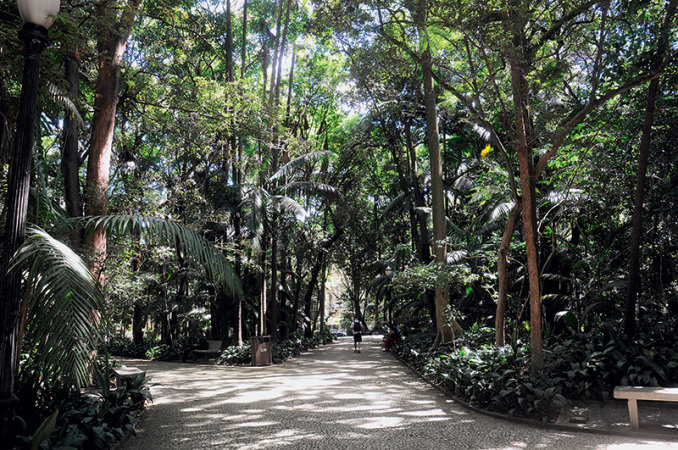parque-trianon-cida-souza-jpg