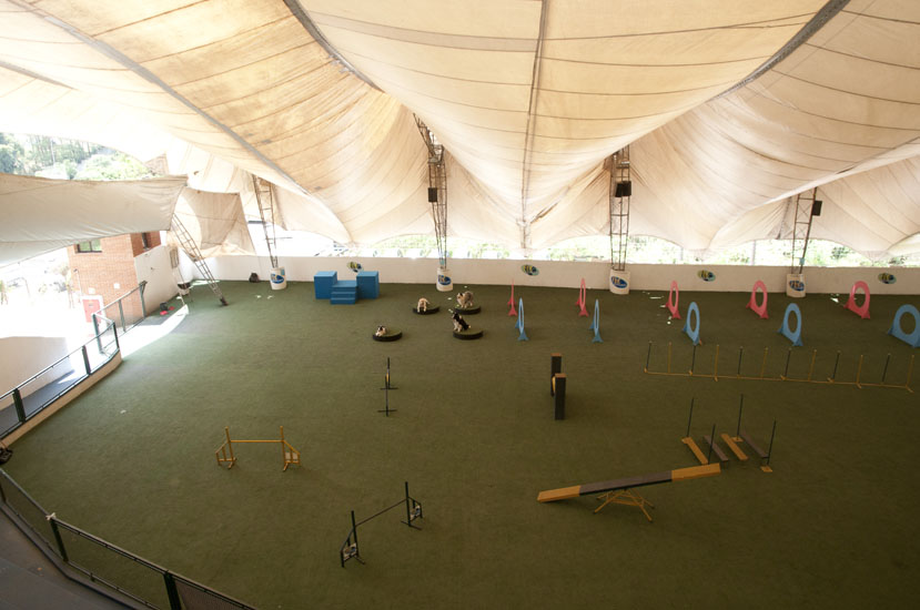 Pet Memorial possui um espaço projetado para treinamento de cães (Pista de Agility)