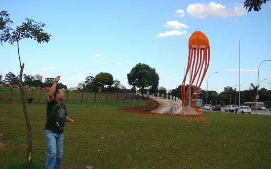 Pipas com segurança no Parque Ecológico do Tietê: para se divertir com segurança, é bom soltar papagaio em lugares como parques e praças