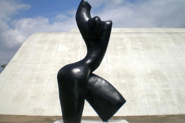Torso Negro, de Vera Torre