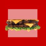 Suporte ao Casamento Igualitário