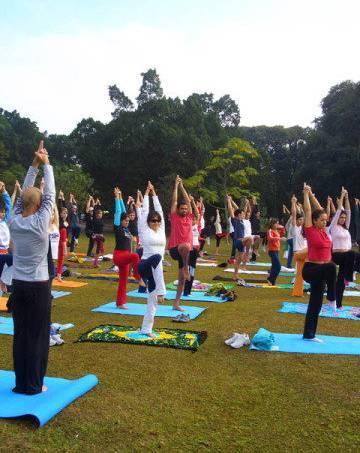yoga-ibirapuera-yoga-no-parque_divulgacao