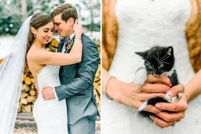 casamento-gatos-01