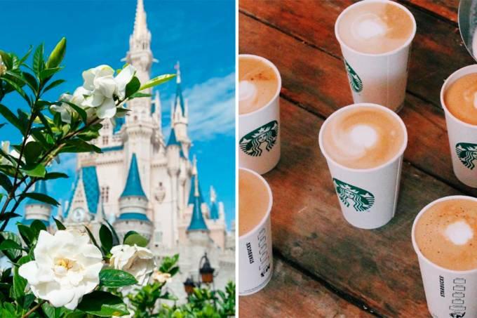 walt-disney-world-frappuccino-starbucks