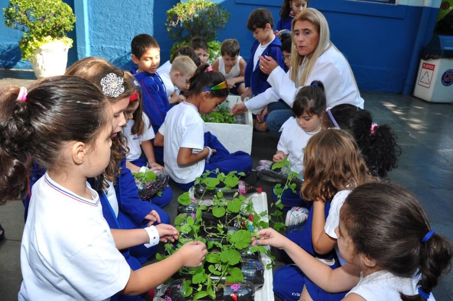Colégio Joana D´arc: jardinagem