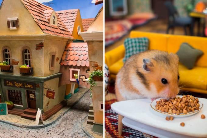 hamsters-famintos-vila-02