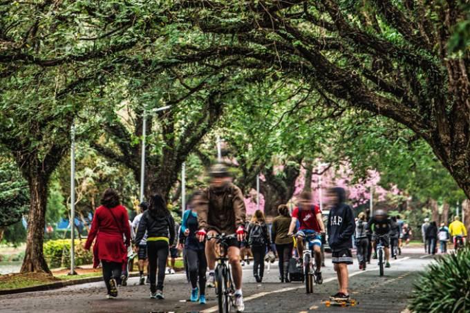 Ciclistas no Parque Ibirapuera.