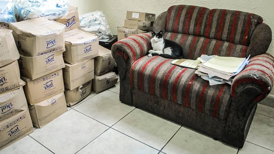 33º DP, em Pirituba: sala do delegado de plantão tem pilha de caixas e até gato
