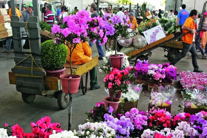 Feira de flores no Ceagesp