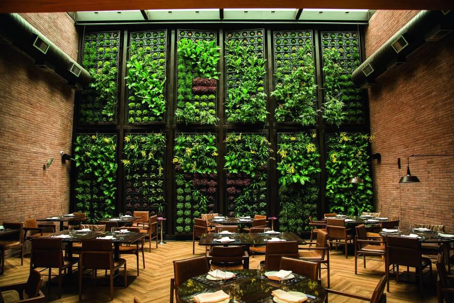 Jardim vertical: orquídeas, avencas e musgos na parede