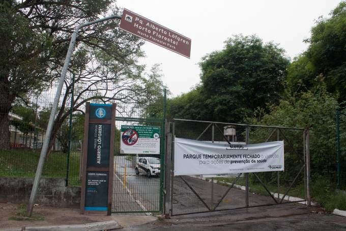 Horto Florestal é fechado em SP após macaco morto com febre amarela ser achado
