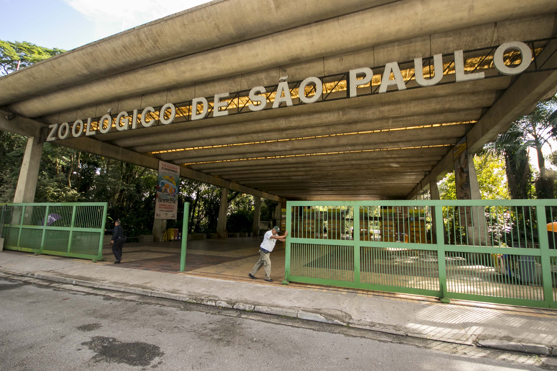 Após 51 dias fechado, Zoológico de São Paulo é reaberto | VEJA SÃO PAULO