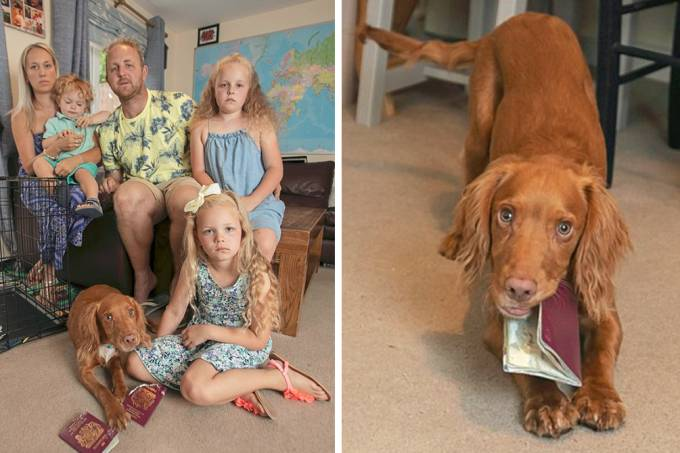 familia-cancela-viagem-cachorro-passaporte-01