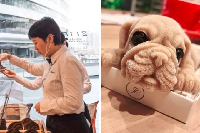 sorvete-cachorro-repercussao-01