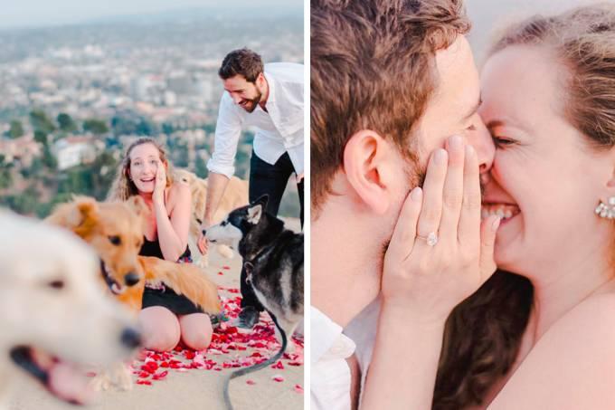 pedido-casamento-cachorro-01