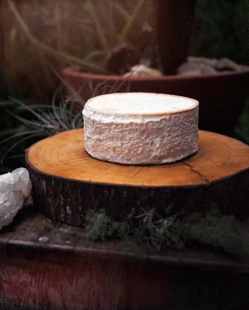 Queijo de leite cru: fabricação própria