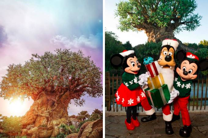 natal-disney-animal-kingdom-01