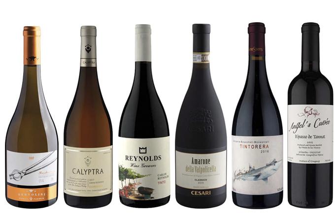 Vinhos inverno – brancos e tintos
