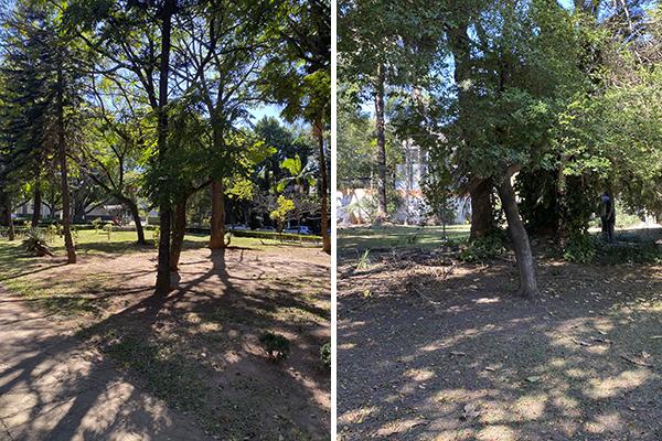Praças das Guianas e Cedro do Líbano, no Jardim América e no Jardim Paulista, respectivamente: pouco uso