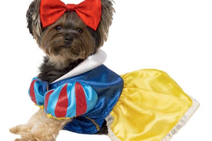cadela princesa, roupinha de cachorro