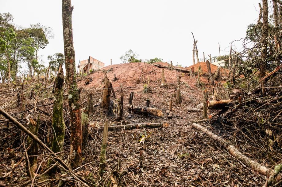 Bairro em construção: depois de causar um incêndio, os loteadores derrubaram as árvores que sobraram e construirão novas casas