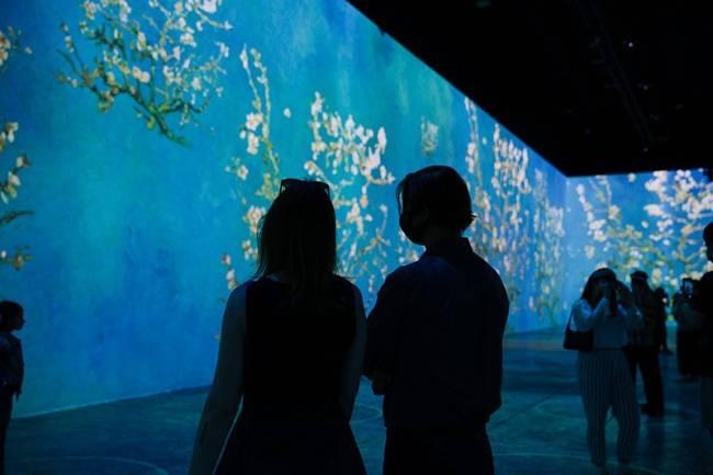 Reprodução/ Facebook/ Immersive Van Gogh Exhibit Chicago