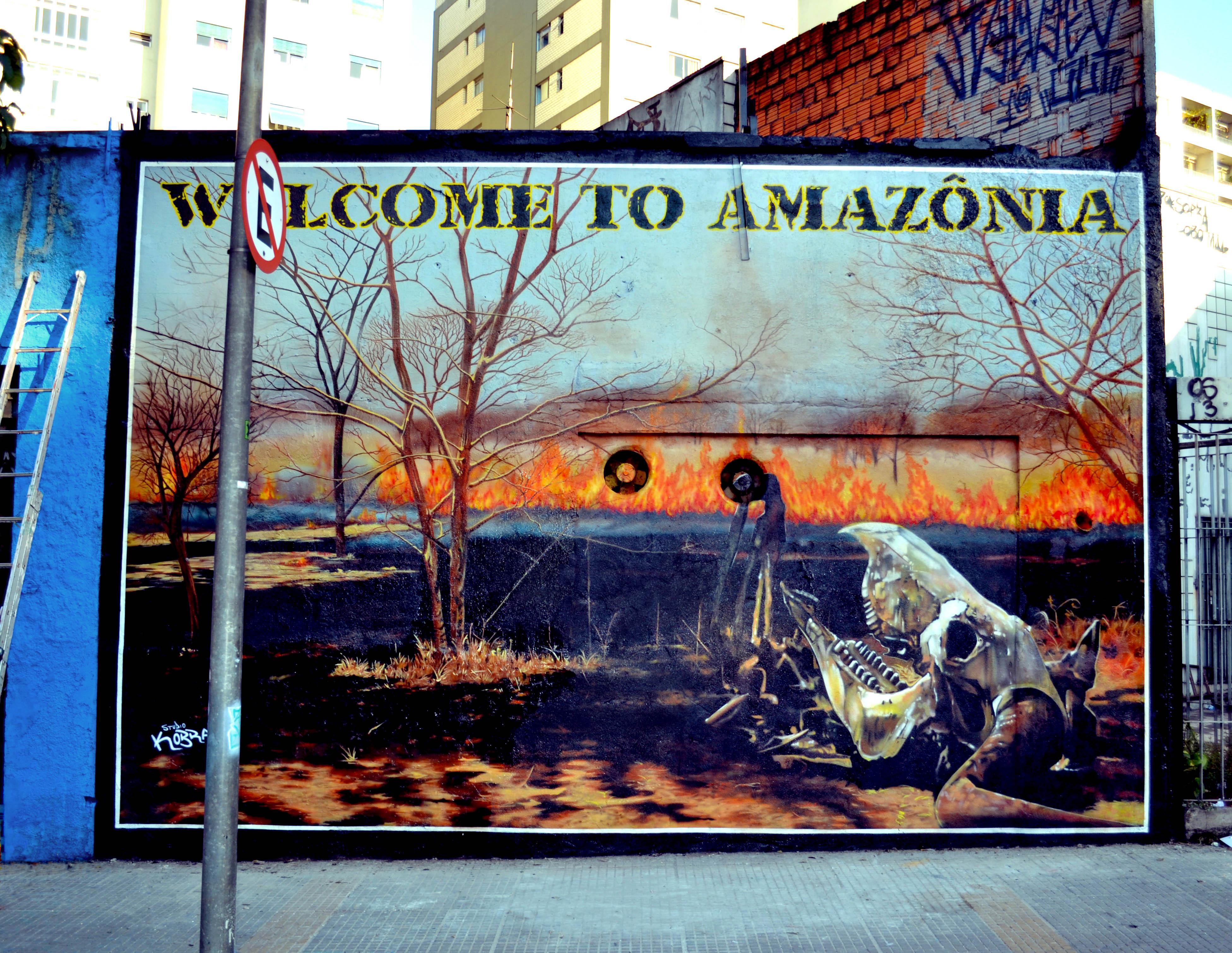 Welcome to Amazônia, mural de Kobra na Avenida Rebouças
