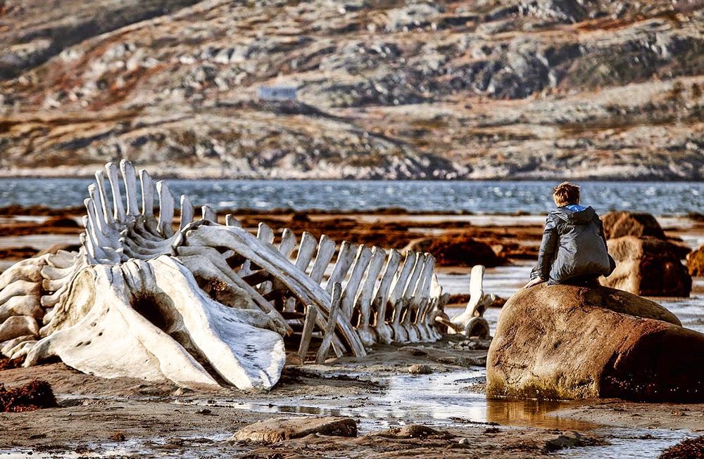pessoa sentada em local onde há a carcaça de uma baleia