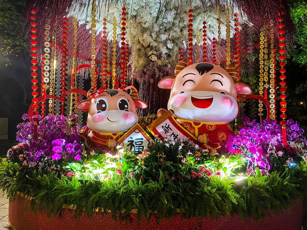 Duas estátuas de boi em animação trajadas para comemoração do Ano Novo Chinês