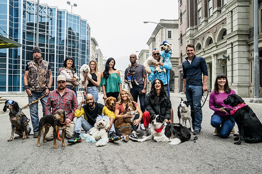 Doze cães e seus donos posam em uma rua de uma cidade
