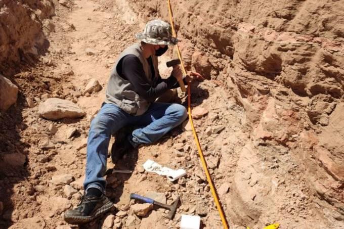 Escavação em rodovia de SP revela fragmentos de dinossauro (Eixo SP-Divulgação)