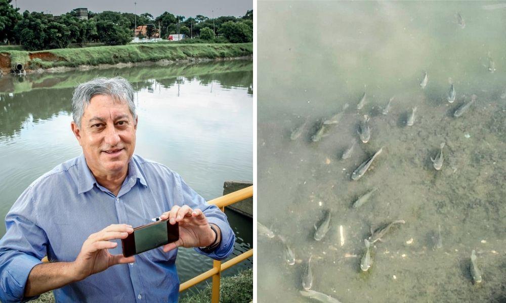 À esquerda, Itamar posa para a foto segurando um celular na horizontal e ao fundo está o Rio Pinheiros. À direita, a foto de Itamar com as tilápias no Rio Pinheiros, nadando na água.