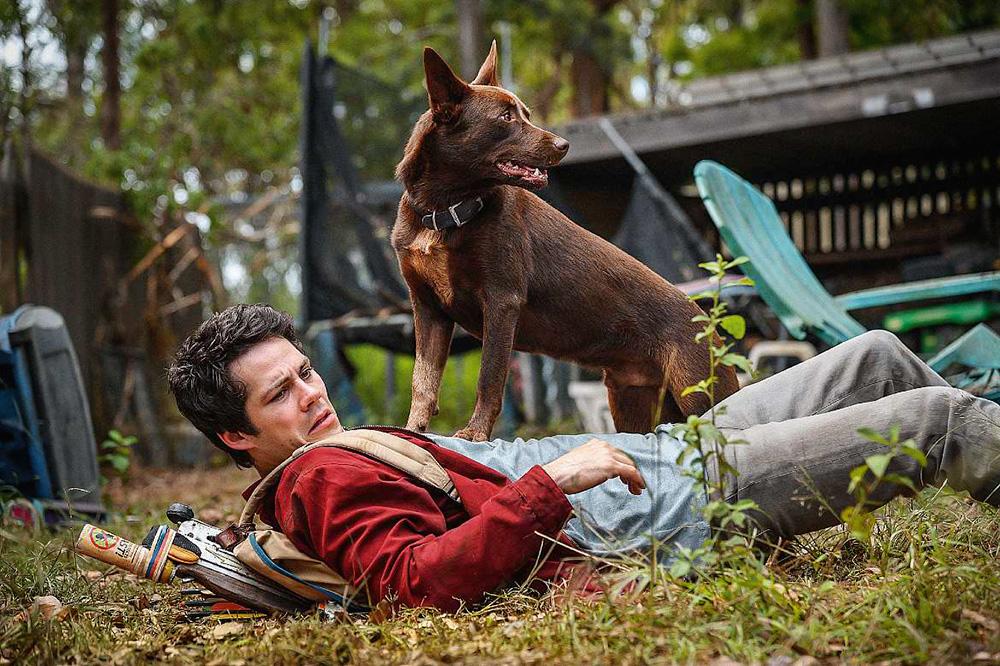 Dylan O'Brie, caído no chão no meio da mata, com um cachorro sobre ele, em pé, olhando para o lado