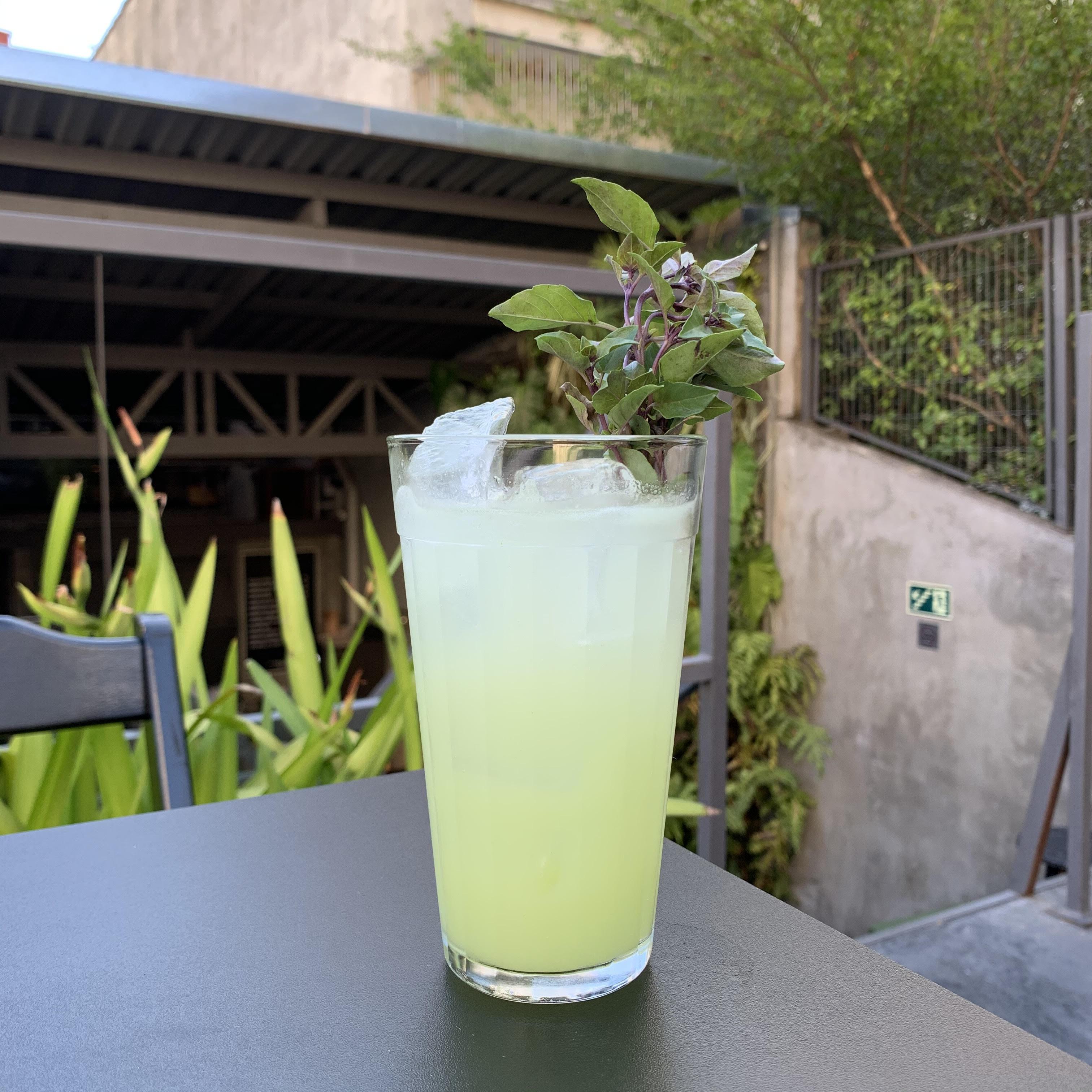 Drinque em copo alto sobre mesa com plantas atrás