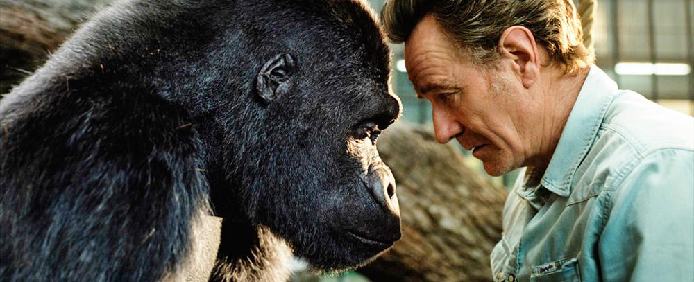 O gorila digital e o ator estão frente a frente, com as testas apoiadas