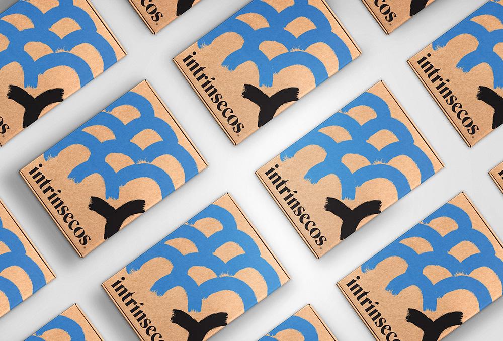 Pacote da Intrínsecos. clube de livros da editora Intrínsecos. Foto exibe vários pacotes alinhados com ilustração abstrata azul e preta.