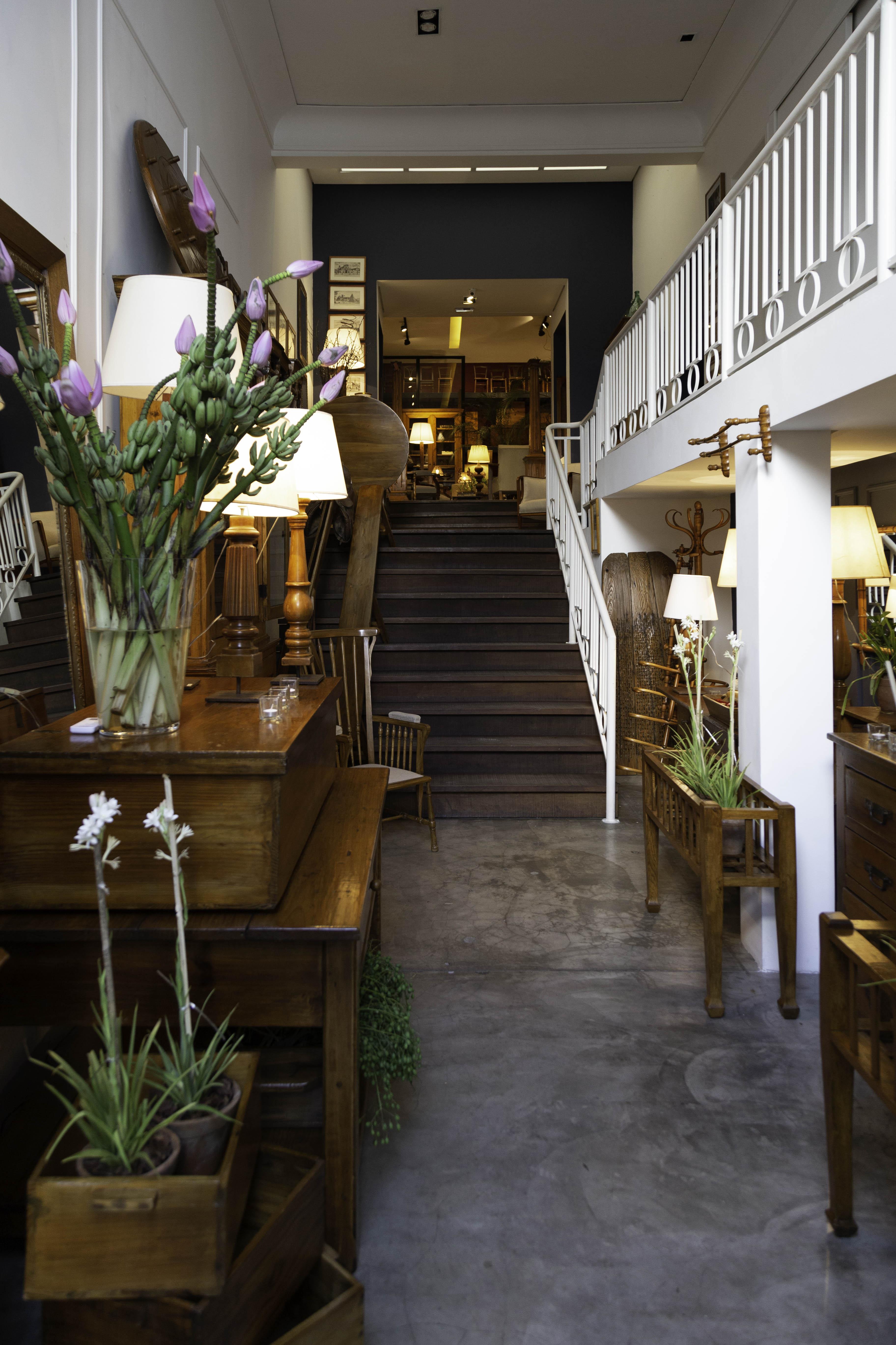 Entrada de loja exibe planta à esquerda e móveis posicionados nos cantos de um longo corredor com escada aos fundos.