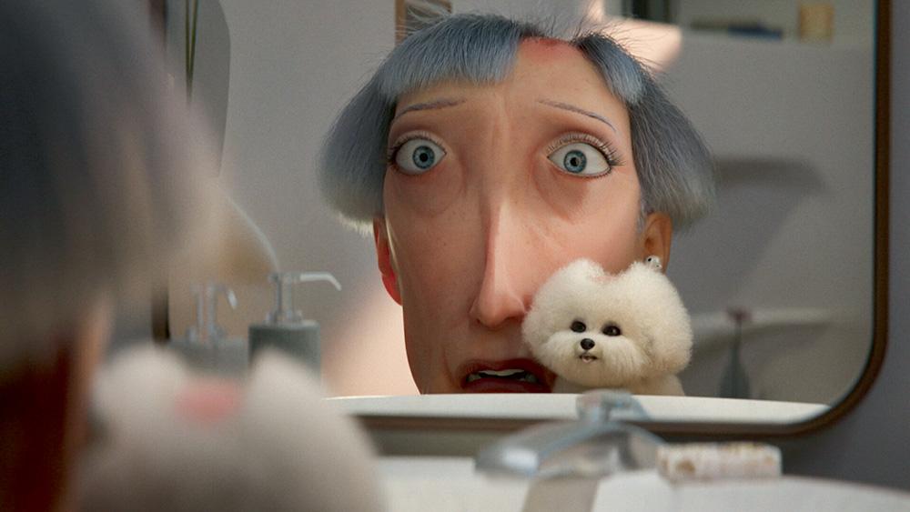 A imagem da animação mostra uma senhora com expressão de assustada olhando para o espelho com um poodle ao seu lado.